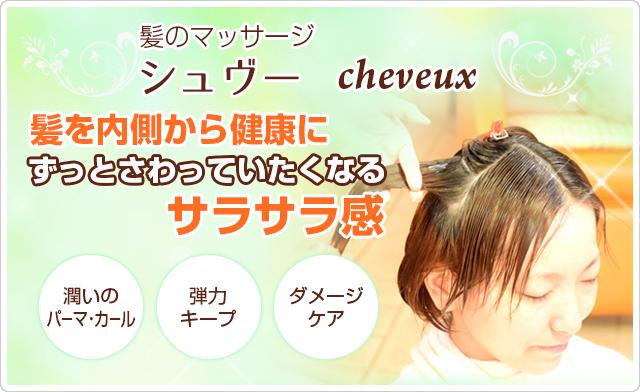 髪の毛のマッサージ「シュヴー」cheveux